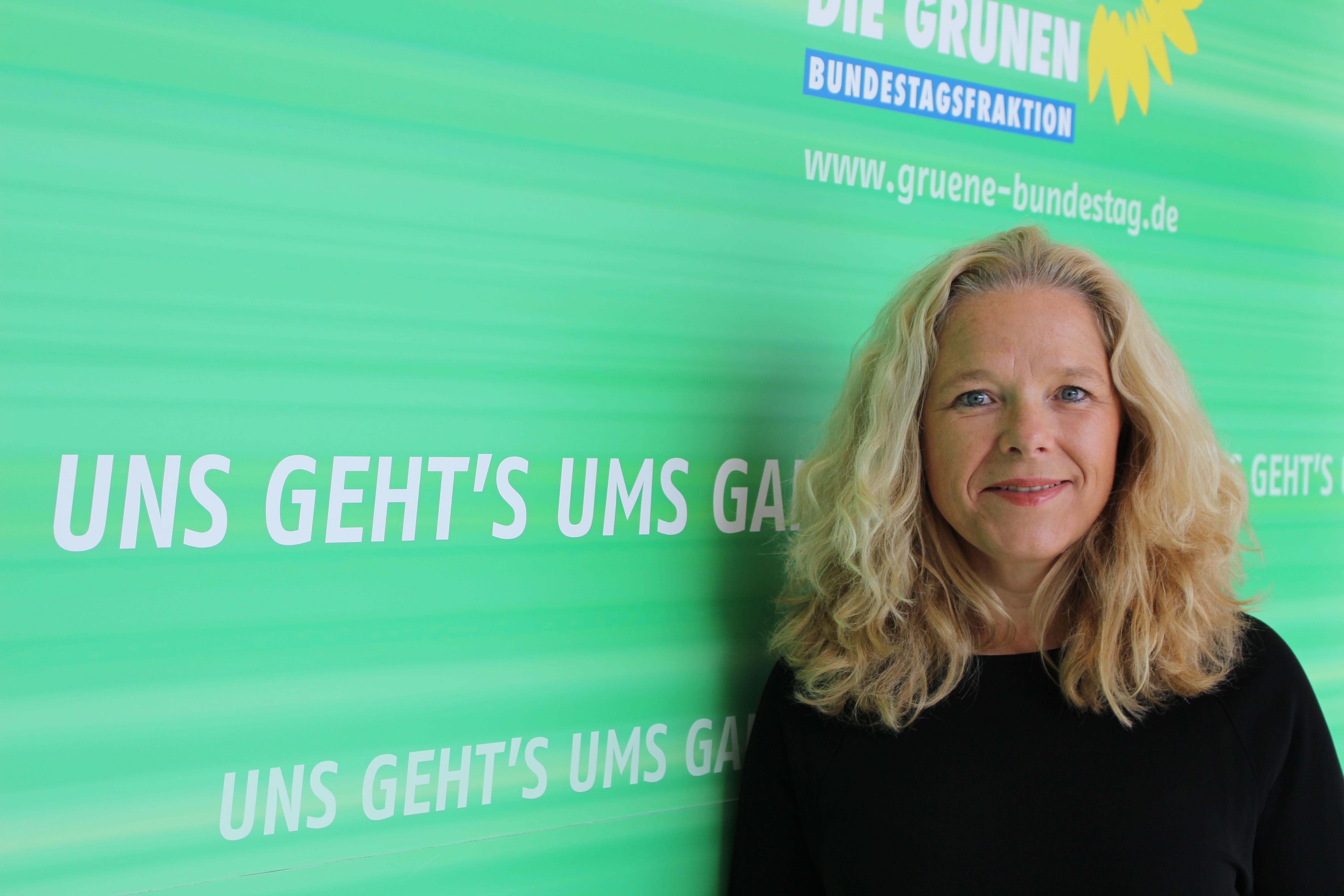 150911 PM Minderheitenrechte Familienausschuss Bundestag Doris Wagner Anhörung