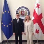 Treffen mit dem ersten stellvertretenden Außenminister, David Dondua